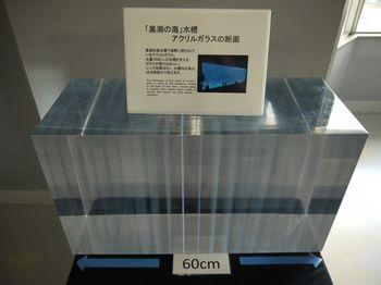 P1290605.JPG